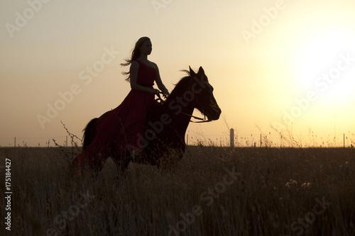 Garden Poster Brazil Silhouette woman rider riding a horse. Evening at sunset