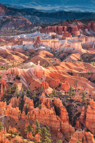 Scenic view of red sandstone hoodoos in Bryce Canyon National Park in Utah, USA
