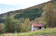 Ramshackle Deserted House In T...