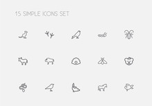 Set Of 15 Editable Zoo Outline Icons. Includes Symbols Such As Pearl, Dolphin, Hawk And More. Can Be Used For Web, Mobile, UI And Infographic Design.