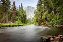 El Capìtan Mountain From Merced River, Yosemite Valley