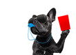 canvas print picture - Referee dog with whistle