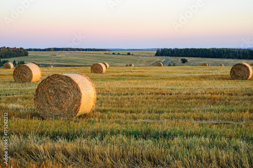 Spoed Foto op Canvas Wit rolls of golden straw on the background of the iridescent sunset sky