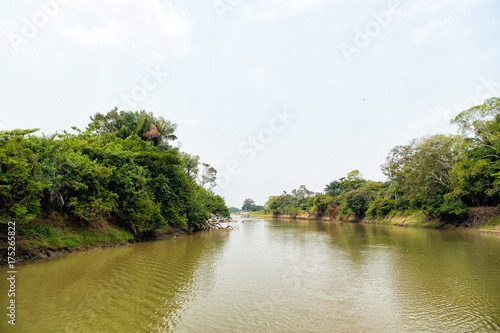 Fotografering River with green trees on banks in Santarem, Brazil