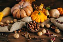 Autumn Harvest. Nuts, Pumpkins, Squash, Spices.