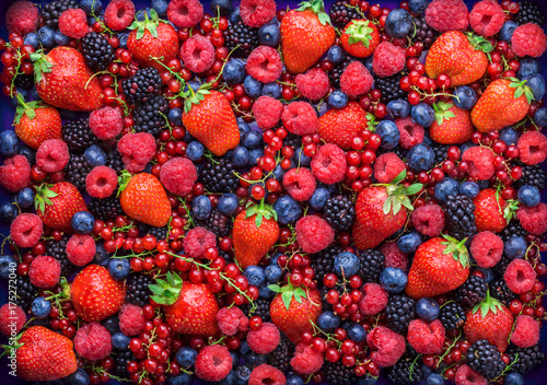 Poster Fruits Berries overhead closeup colorful large assorted mix of strawbwerry, blueberry, raspberry, blackberry, red curant in studio on dark background