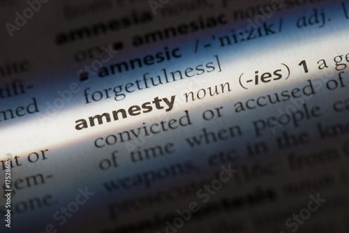 Photo Amnesty word in a dictionary. Amnesty concept