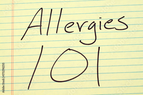 Vászonkép The words Allergies 101 on a yellow legal pad