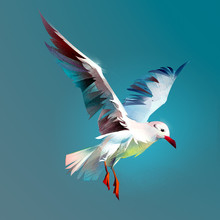 Drawn Flying Bird Seagull. Sketch Of Stylized Flying Birds On A Color Background