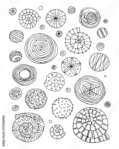 Fotomurales - Abstract design elements, spirals and circles sketch