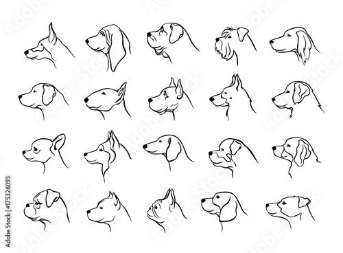 Poster de jardin Chambre bébé collection of dogs heads profile side view portraits silhouettes in black color