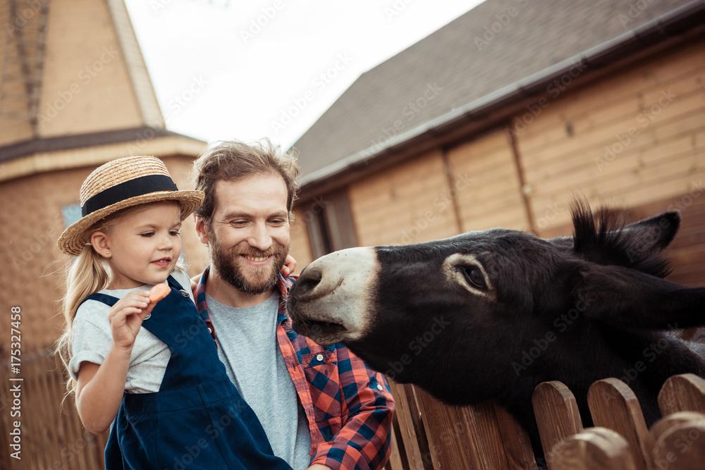 Fototapeta family feeding donkey in zoo