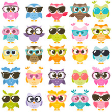 Set Of Colorful Owls With Glas...