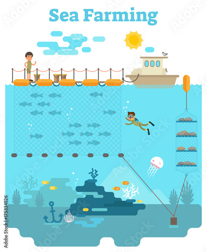 Sea Farming - Aquaculture concept illustration with growing fish and other sea p Wallpaper Mural