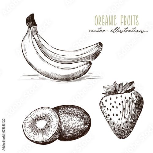 Banana Strawberry Kiwi Organic Fruits Drawings Buy This Stock