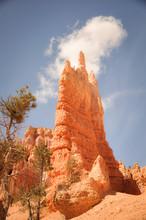 Hoodoos Of Bryce Canyon