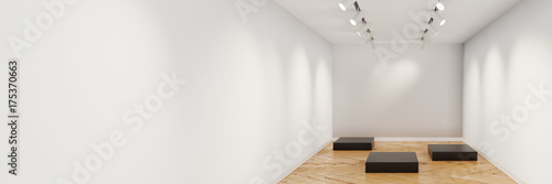 Fotografie, Obraz  Empty museum showcase with customizable copy space