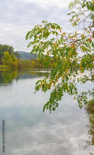 Foto auf Gartenposter Fluss Idylle am Wasser
