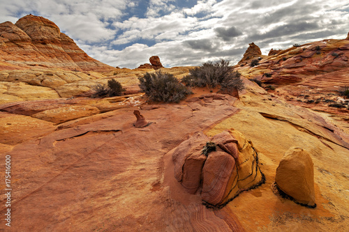 Landscape At South Coyote Buttes Canvas-taulu