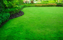 Decorative Garden, Green Lawn,...