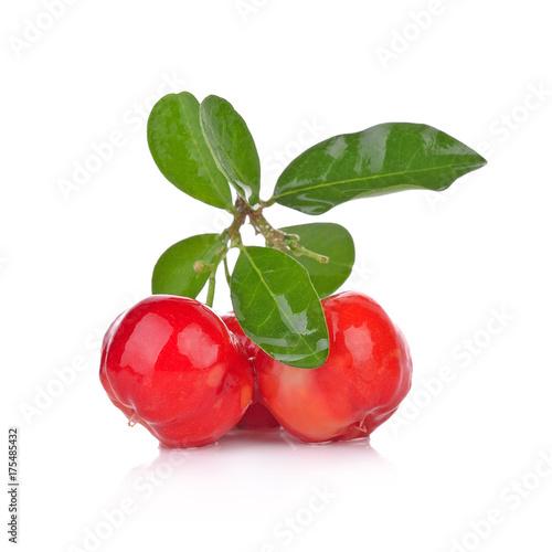 Photo Barbados cherry, Malpighia emarginata, Family Malpighiaceae