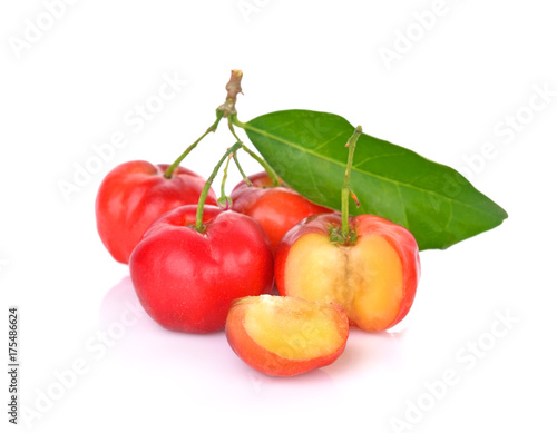 Barbados cherry, Malpighia emarginata, Family Malpighiaceae Canvas Print