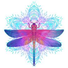Ornate Dragonfly Over Colorful Round Mandala Pattern. Ethnic Patterned Vector Illustration. African, Indian, Totem, Tribal, Zentangle Design.