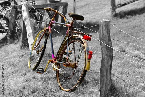 stary-rower