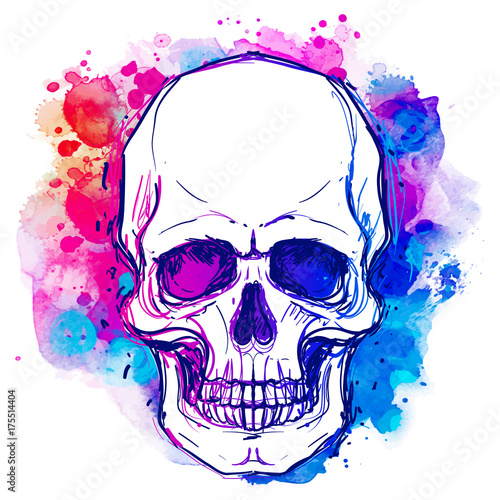 In de dag Aquarel schedel Watercolor sketchy skull with red, blue and purple colors isolated on white background. Vector illustration.