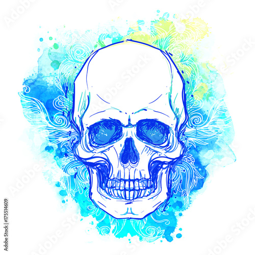 Photo sur Toile Crâne aquarelle Watercolor sketchy skull with red, blue and purple colors isolated on white background. Vector illustration.