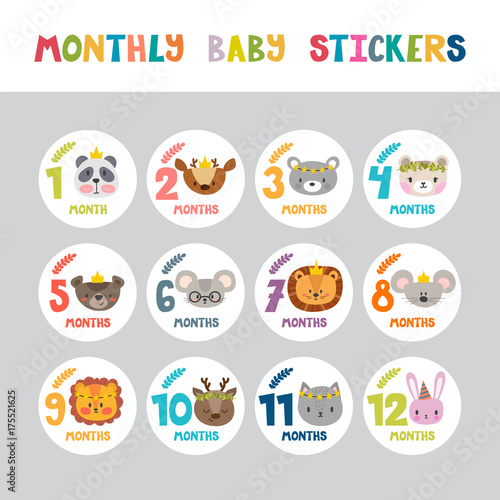 Monthly Baby Stickers For Little Girls And Boys Month By Month