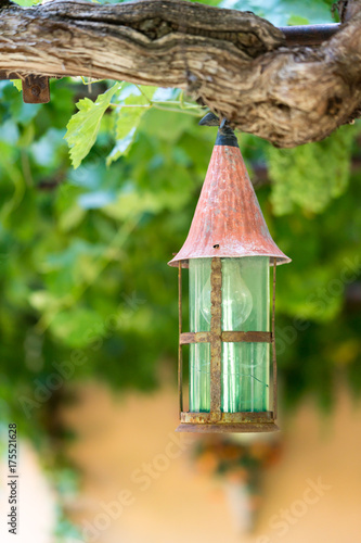 Photo  Small lantern in romantic wine garden