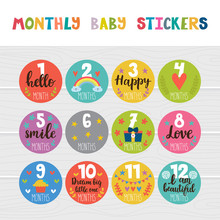 Monthly Baby Stickers For Litt...