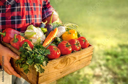 Farmer holding box with fresh vegetables