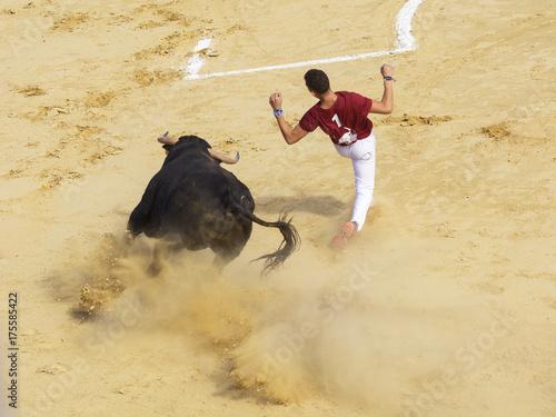 Keuken foto achterwand Stierenvechten Competición de recortes con toros bravos en España. En esta competición la gente usa su propio cuerpo para torear