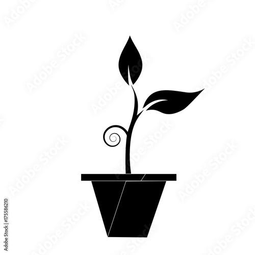 Green Plant White Black Clip Art - Organism Transparent PNG