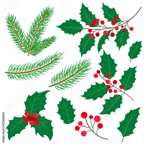 Set of fir tree and mistletoe branches with leaves and berries, Christmas decoration, flat cartoon style vector illustration on white background Canvas Print