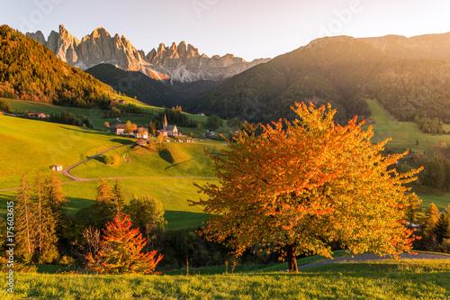 Deurstickers Honing Autumn foliage, Dolomites Alps, Funes Valley, Santa Maddalena. Trentino, Alto Adige, Italy