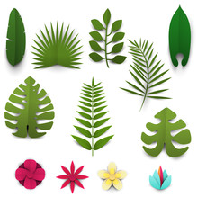 Set Of Cartoon Tropical Leafs And Flowers In Paper Cut Trendy Craft Style. Modern Design For Advertising, Branding Greeting Card, Cover, Poster, Banner. Vector Illustration.
