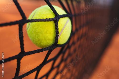 Tennis ball in tennis net Canvas Print