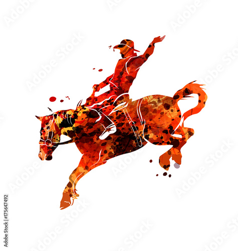 Vector watercolor silhouette of a rodeo rider