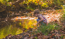 Young Boy Playing In A Stream In Autumn