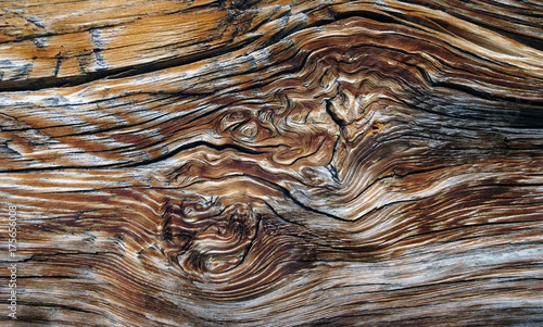 Altholz - aged wood - 175656008