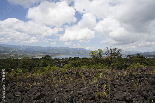 Poster  Lake Arenal, field of lava of 1993, National Park Arenal, Costa Rica, Central Am