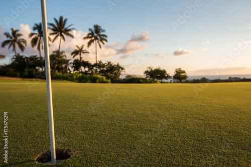Plakat Otwór na pole golfowe