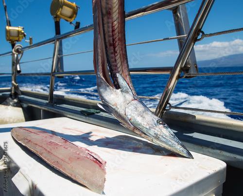 Plakat Świeża cięcie ryba na ocean statecznej łodzi