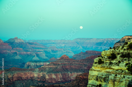 Wall Murals Green coral Grand Canyon.