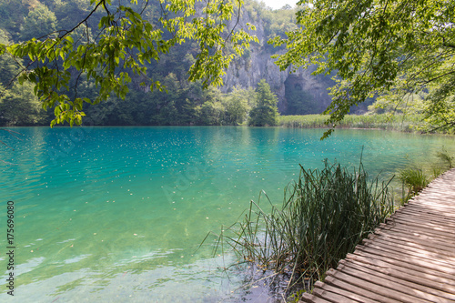 Canvas Prints Green coral Plitvice National Park, Croatia.