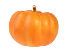 Pumpkin On White Background.