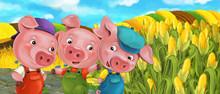 Cartoon Scene Three Pig Brothe...
